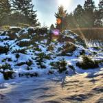 """""""HDR Winter Scene 1"""" by MikeandAmy"""