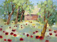 Hidden Cottage Poppies by Joyce Hicks