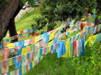 Prayer Flags in Shangrila