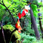 """Prayer Flags"" by PhilBarnhart"