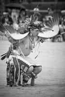 Zuni Eagle Dancer