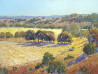Long Shadows at Los Olivos by Joyce Hicks