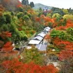 """Kyoto : Otowa-san Kiyomizu-dera"" by Tomatoskins"