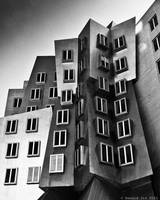 Day 241 (4-03): The Stata Center