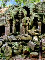 Te Prohm Temple Ruins 5
