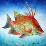 """Hogfish Snapper"" by nancytilles"