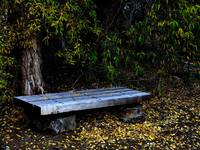 Park Bench.