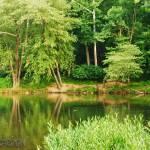 """""""Ano River"""" by Barjay"""