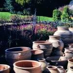 """Pots"" by LEHB"