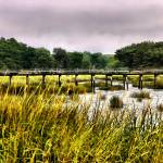 """Wellfleet"" by PJPHOTO"