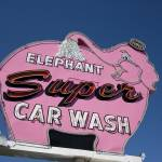 """Elephant Car Wash"" by midcenturymodern"