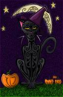 Bewitching Cat