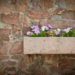 """petunia flowers on a stone wall in a pot of stone"" by valkot"