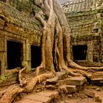 """Ta Phrom, Cambodia! Cr@zY"" by Taylor_Miles"