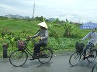 Vietnamese men going to work
