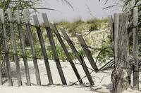 Fenced in Beach