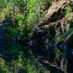 """Beaver Creek Cameo"" by JohnChaoPhoto"