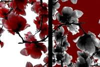 Black, Red, and White Flowers