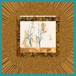"""inw20a0017_loving-leo__tiki-honey_fxfr-teal_sq"" by inwonderdesigns"