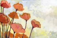 Poppies in Cream