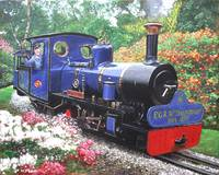 exbury steam railway 10th anniversary