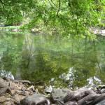 """River Relections 2"" by WuziCat"