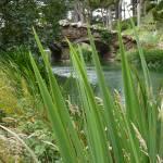 """Bridge at Stowe Lake"" by WuziCat"