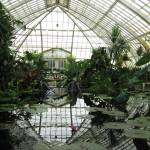 """Conservatory"" by WuziCat"
