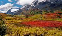Colorful Land - Alaska