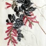 """""""Hyacinth Bean Vine"""" by ShaSha"""