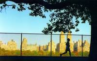 Central Park Run, New York City