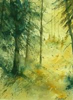 watercolor 030106 bis
