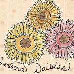 """Gerbera Daisies"" by CharlaPettingill"
