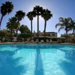 """""""pool palms"""" by artfilmusic"""