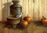 bluejay-pumpkin