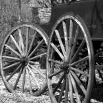 """SDC Wagon Wheels"" by CurtisNeeley"