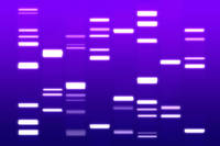 DNA Art Purple