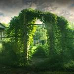 """Garden Gate"" by PhillipHaumesser"