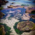 """Rock pools"" by kckozphotography"
