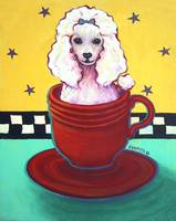 Radioactive Red Fiesta Teacup Poodle - Funny Dog