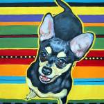 """Four on the Floor on Serape - Funny Chihuahua Dog"" by RebeccaKorpita"
