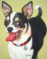 Elvis the Chihuahua - Funny Dog