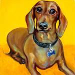 """Tigger Smiles - Funny Dog Smiling Dachshund"" by RebeccaKorpita"