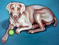 Weimeraner with Green Ball - Dog Portrait