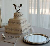 Cake Before the Bride and Groom