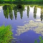 """The River Trent Reveals (28578-RDA)"" by rodjohnson"