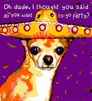 Oh Dude! Chihuahua in Mexican Hat - Funny Dog