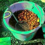 """Crawfish Boil - Southern Seafood Louisiana"" by RebeccaKorpita"