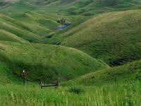 Rolling Hills of America's Northwest