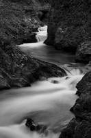 The Soteska Vintgar gorge in Black and White